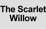 scarlet willow uk